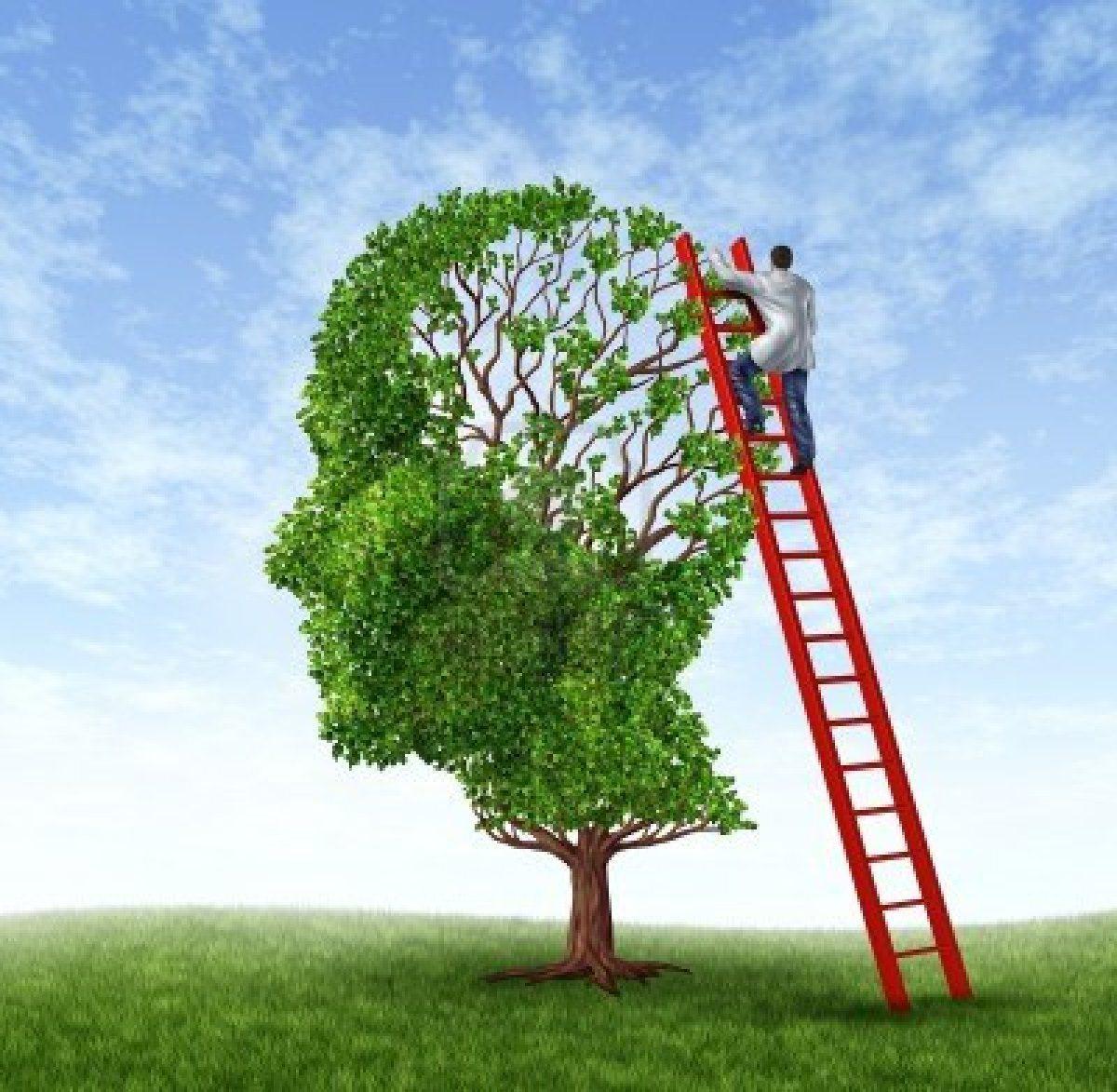 mente-albero.jpg
